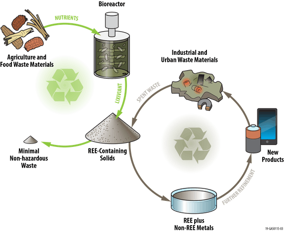 rare earth elements, recycling, clean energy, sustainability, potato wastewater